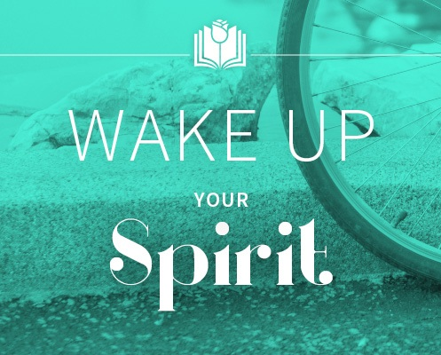 wake up your spirit sonia choquette